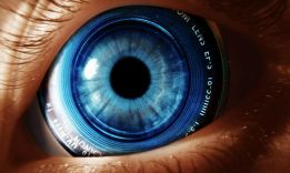 How to Develop a Photographic Memory?