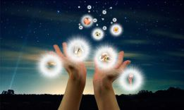How to materialize thoughts: 5 effective tips