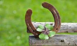 4 Steps How to Attract Good Luck
